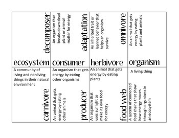 Ecosystem Vocabulary Puzzle