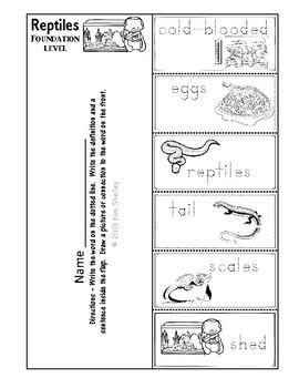 Ecosystem Vocabulary - Reptile Foundations