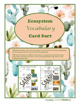 Ecosystem Vocabulary Sort- TEKS 5.9 A & C aligned for STAAR