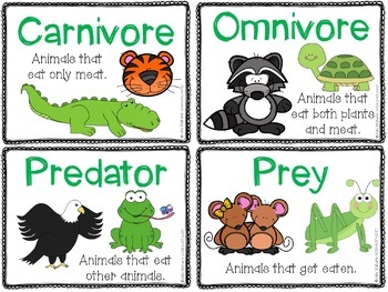 Ecosystems Vocabulary Cards and Word Work Activities