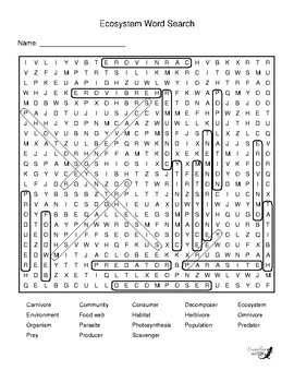 Ecosystem Word Search!