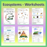 Ecosystems - Worksheets   Printable and Digital Distance Learning