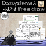 Ecosystem and Habitat Free Draw with Rubric