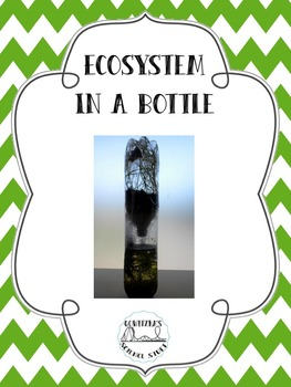 Ecosystem in a Bottle
