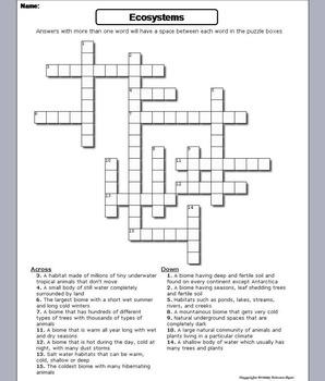 Ecosystems Worksheet/ Crossword Puzzle