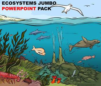 Ecosystems – A Fourth Grade PowerPoint Jumbo Pack