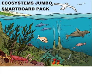 Ecosystems - A Fourth Grade SMARTBoard Jumbo Pack