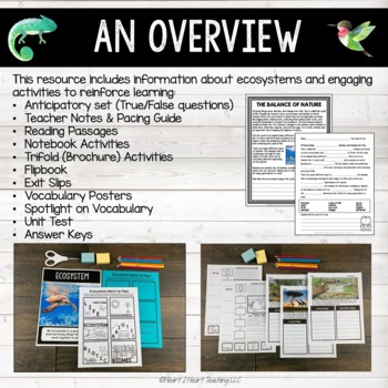 Ecosystems - Biomes, Food Chains, Photosynthesis, Animals & Meet John Muir