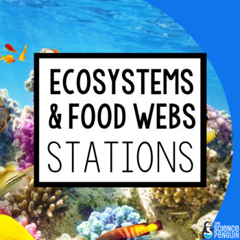 ecosystems and food webs stations a big science stations unit tpt