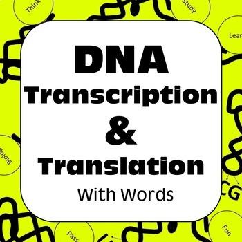 DNA Transcription & Translation With Words: Dry Lab High School Biology Genetics
