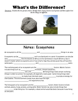 Ecosystems - Abiotic and Biotic Factors Lesson
