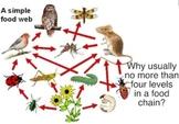 Ecosystems & Adaptations