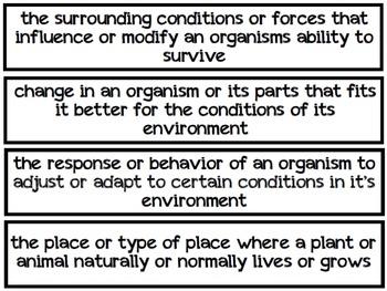 Ecosystems Pocket Chart Vocabulary (EDITABLE)