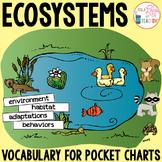 Ecosystems Pocket Chart Vocabulary | EDITABLE