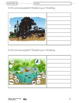 Ecosystems & Biomes Lesson Plan Grade 7