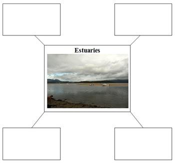 Ecosystems: Categorizing characteristics of ecosystems using graphic organizers