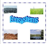Ecosystems: Categorizing characteristics of ecosystems using graphic organizers