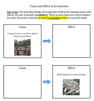 Ecosystems Cause and Effect
