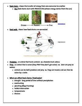Ecosystems Complete Unit