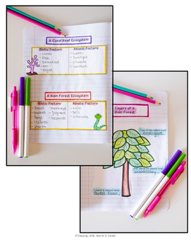 Ecosystems Differentiated/Quick Version- Science Interactive Notebook & Journal