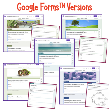 Ecosystems: Energy Flow and the Recycling of Matter Homework Bundle