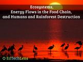 Rainforest Ecosystems, Food Chains, Humans & Rainforest Destruction EPUB