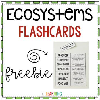 Ecosystems Flashcards {Freebie}