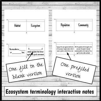 Ecosystems Interactive Notebook Foldables Bundle