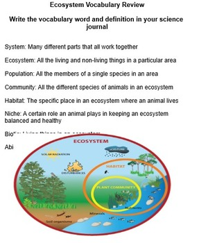 Ecosystems/Food Chain