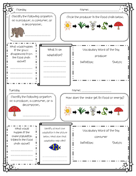 Ecosystems/Food Chains Daily Review for Morning Work, Homework, or Classwork