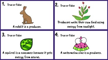 Ecosystems, Food Chains, Food Webs True or False Task Cards