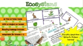 Ecosystems, Food Chains, Food Webs * True or False Cards *