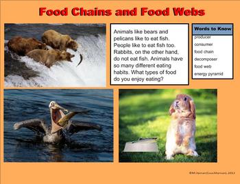 Ecosystems, Food Chains, and Food Webs - A Third Grade PowerPoint Introduction