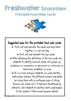 Ecosystems Food Web Printable Cards