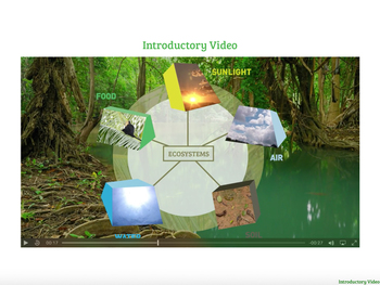Ecosystems - Food and Energy from the Sun and Humans in the Rainforest EPUB