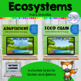 Ecosystems | Google™ Slides and Forms | Mini BUNDLE