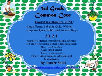 Ecosystems Grade 3 Common Core Standard 3.L.2.1 Bingo and Quiz