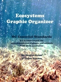 Ecosystems Graphic Organizer Activity
