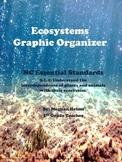 Ecosystems Graphic Organizer Activity