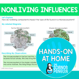 Ecosystems {Hands-on at Home} | Distance Learning