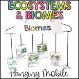 Ecosystems Hanging Mobile {Biomes too}