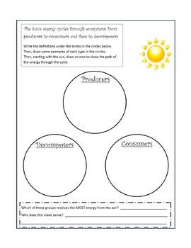 Ecosystems Interactive Notebook - Virginia SOL 4.5 - Science Unit