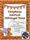Ecosystems Internet Scavenger Hunt (Food Chains, Food Webs)