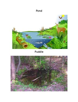 Ecosystems Introductory Lesson