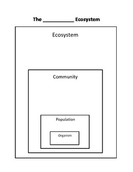 Ecosystems - Levels of Organisms Video and Activity