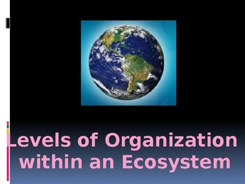 Ecosystems - Levels of Organization