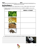 Ecosystems - Levels of an Ecosystem Lesson