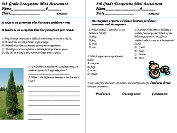 Ecosystems Mini-Assessments