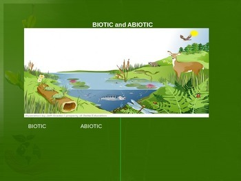 Ecosystems PowerPoint Lesson