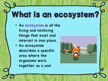 Ecosystems PowerPoint and Notes Set